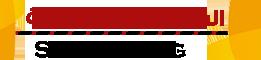 الشروق للأستضافة - SH Hosting logo
